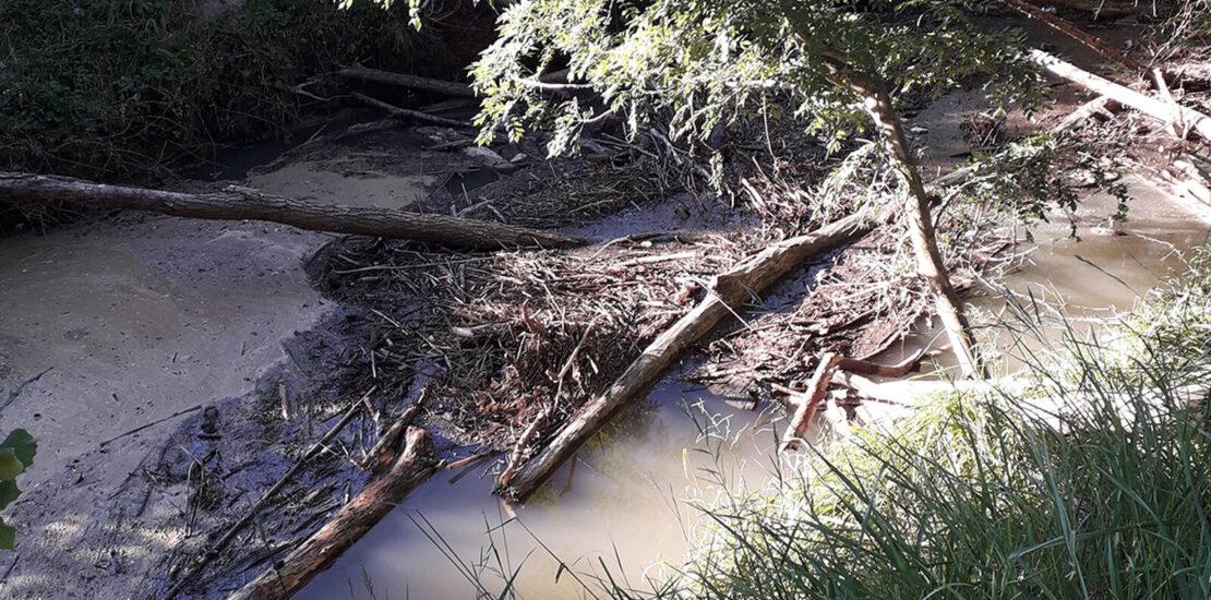 Embâcle Bassin de la Gupie